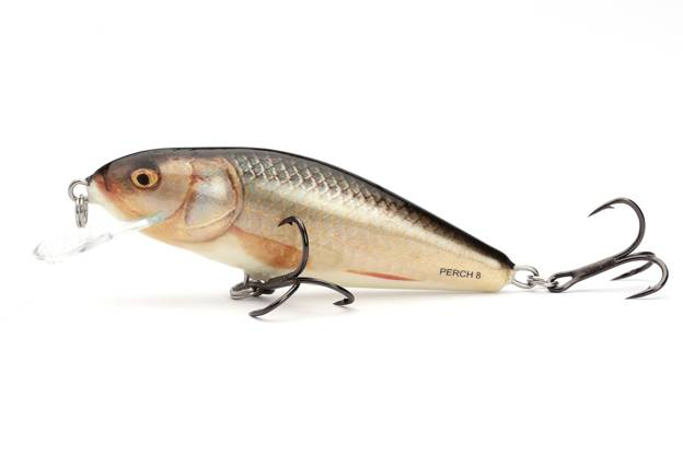 QPH010 - SALMO WOBLER PERCH FLOATING 8cm - REAL ROACH