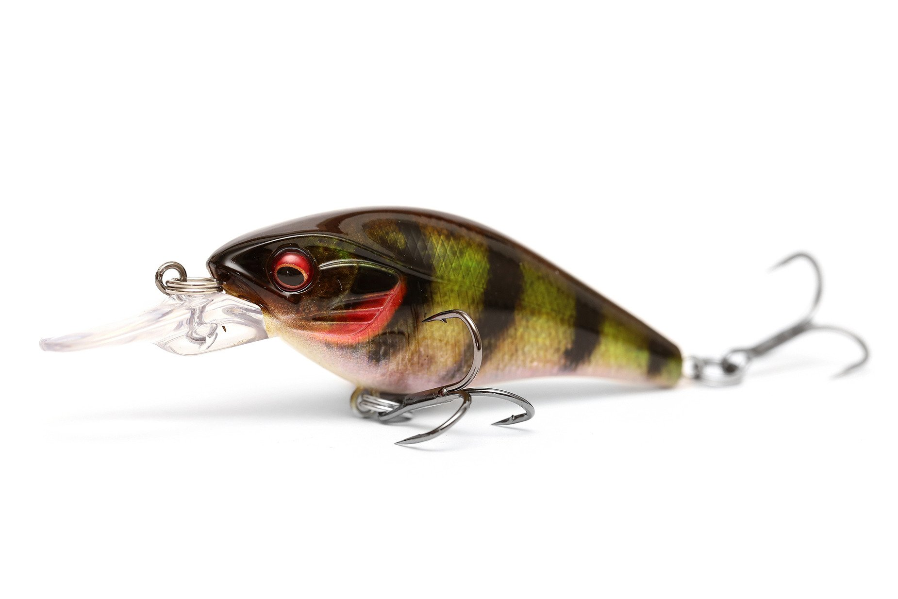 Daiwa Prorex Toddler Crank Live Perch